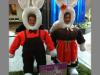 duas-coelhas